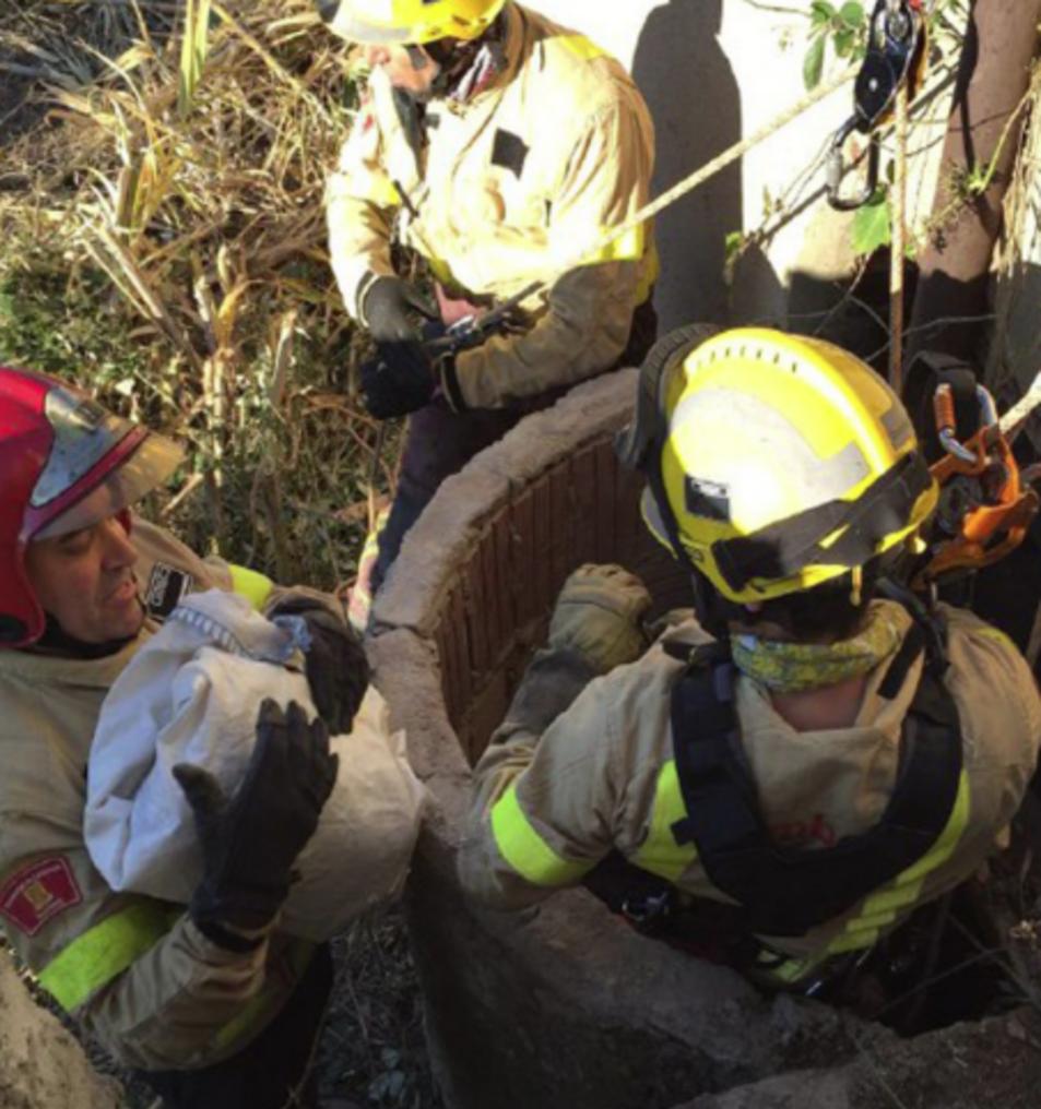 Tres dotacions de bombers han treballat en el rescat del gos.