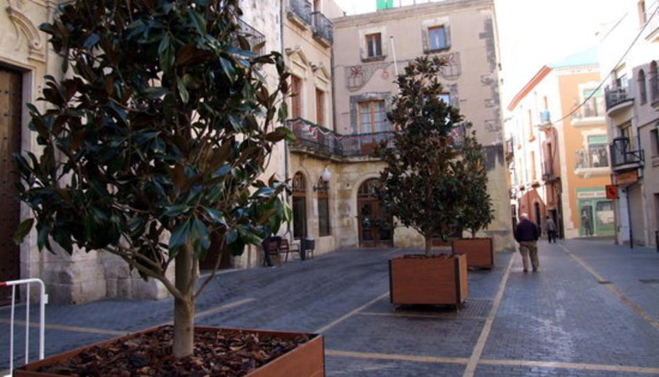 Pla general de la plaça Vella del Vendrell, amb l'ajuntament al fons, en el dia de col·locació dels arbres amb torretes mòbils.