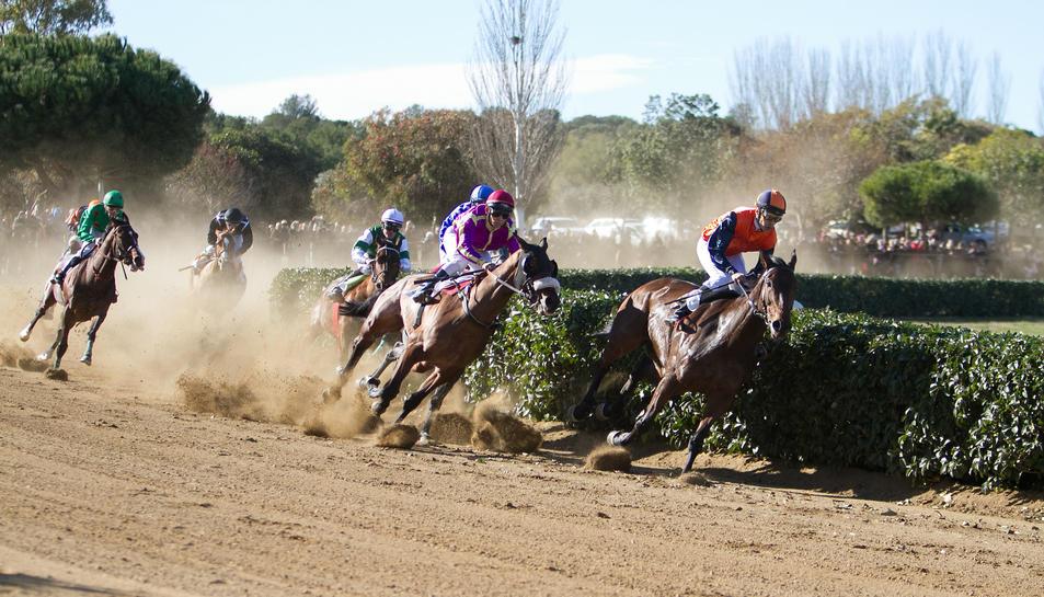 Els participants a una de les tres curses que es van disputar ahir al matí al parc de la Torre d'en Dolça, a Vila-seca.