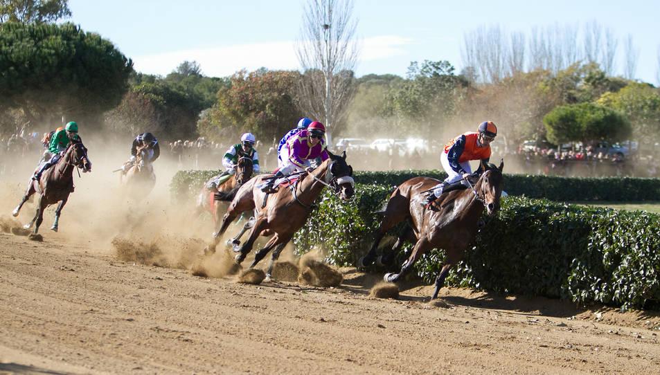 La velocitat dels cavalls ha deixat bocabadats als assistents.