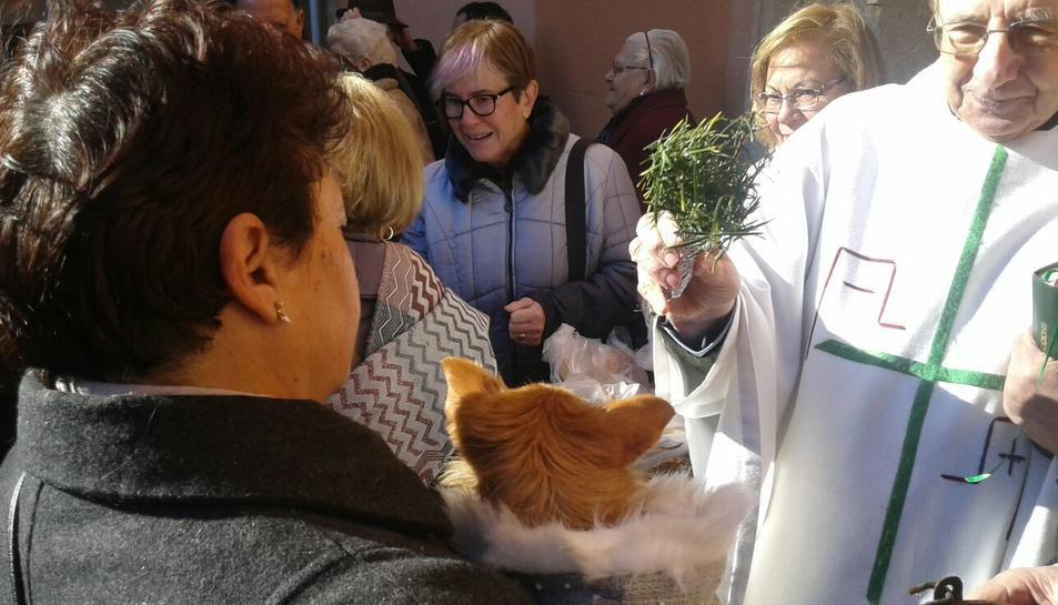 Després de la missa, els presents van sortir a la plaça per beneir els seus gossos.