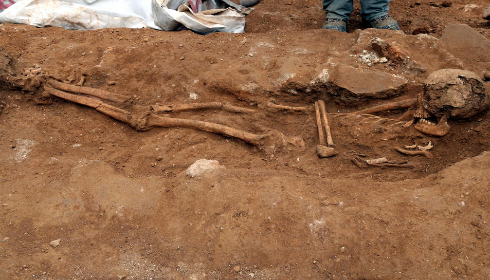 Detall de les restes òssies trobades a Tarragona, simulant l'esquelet. Imatge del 20 de gener de 2017 (Horitzontal)