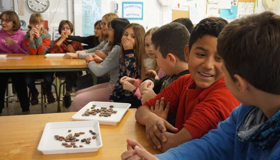 Una de les primeres sessions que van fer els alumnes va ser el taller 'Desxifrant l'ADN del cacau'.