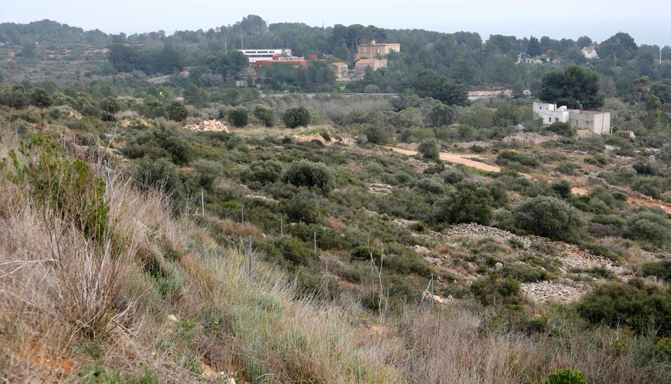 El nou barri projectat es construirà en aquesta zona que va de les instal·lacions del Nàstic a l'urbanització de Boscos.