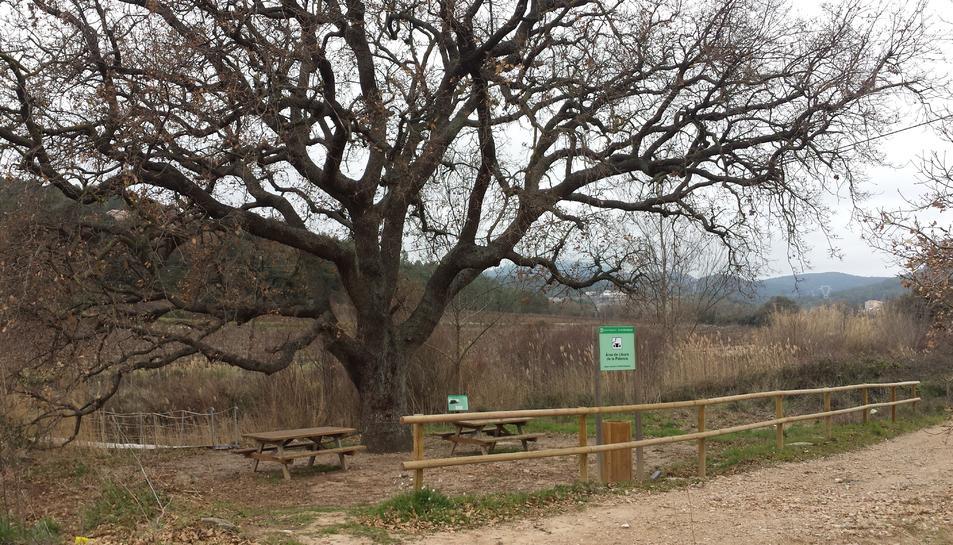 Imatge de la renovada àrea de lleure de la Palanca.