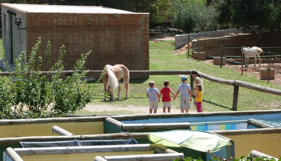 Els assistents podran conèixer els animals de la Granja-Escola Corral de Neri i realitzar diverses activitats.