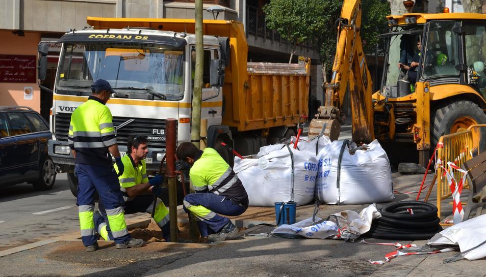 Operaris treballant en les tasques de replantació.