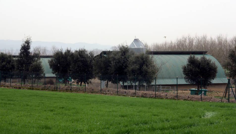 Una imatge exterior d'una granja de Sant Gregori on s'ha fet comprovacions pel focus de grip aviària.
