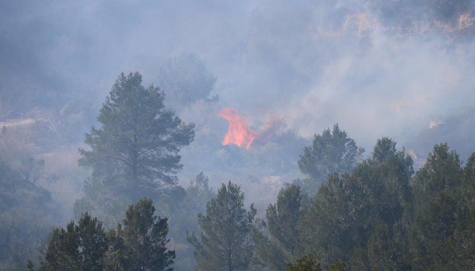 Flames actives a la zona de l'incendi al barranc de Sant Antoni de Roquetes.
