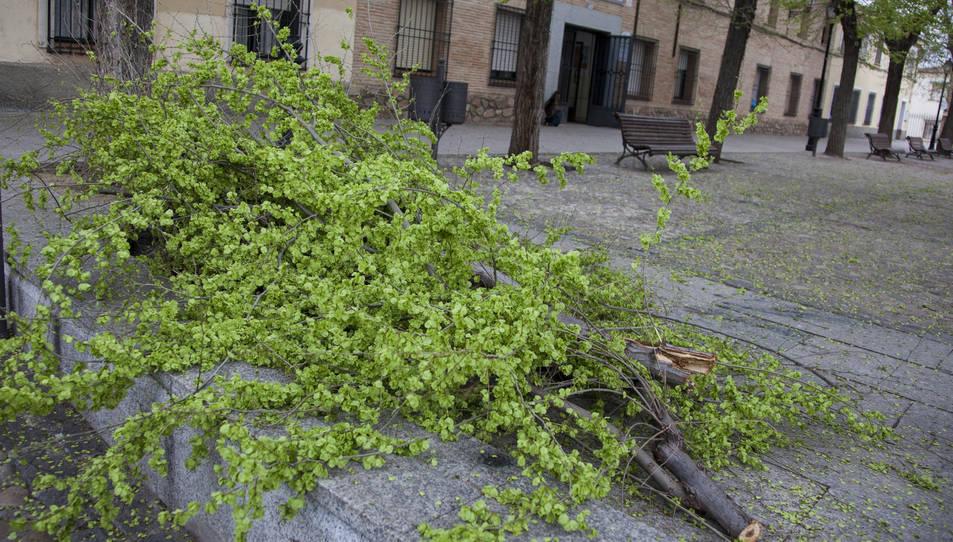 Diverses comarques de la província de Toledo es troben en alerta groga davant el risc de fortes ratxes de vent.