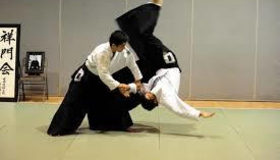 L'Aikido es vol donar a conèixer.
