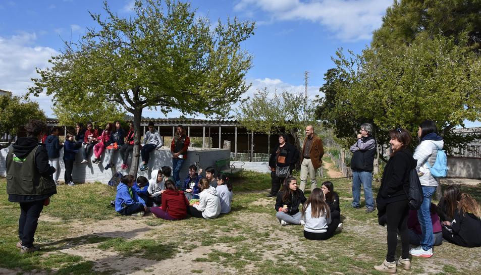 Imatge dels alumnes que han realitzat les primeres activitats de la Festa de l'Arbre.