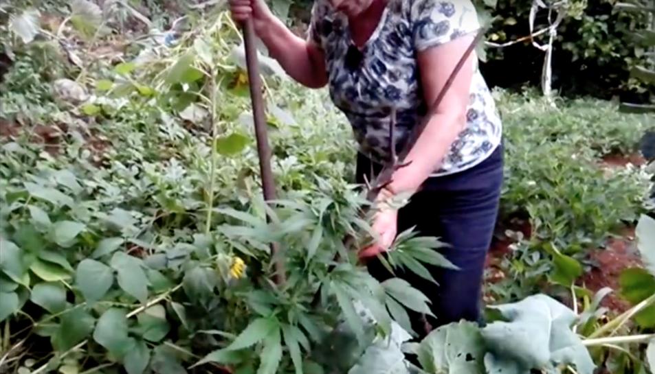 Maruxa amb la misteriosa planta que va aprèixer al seu hort.