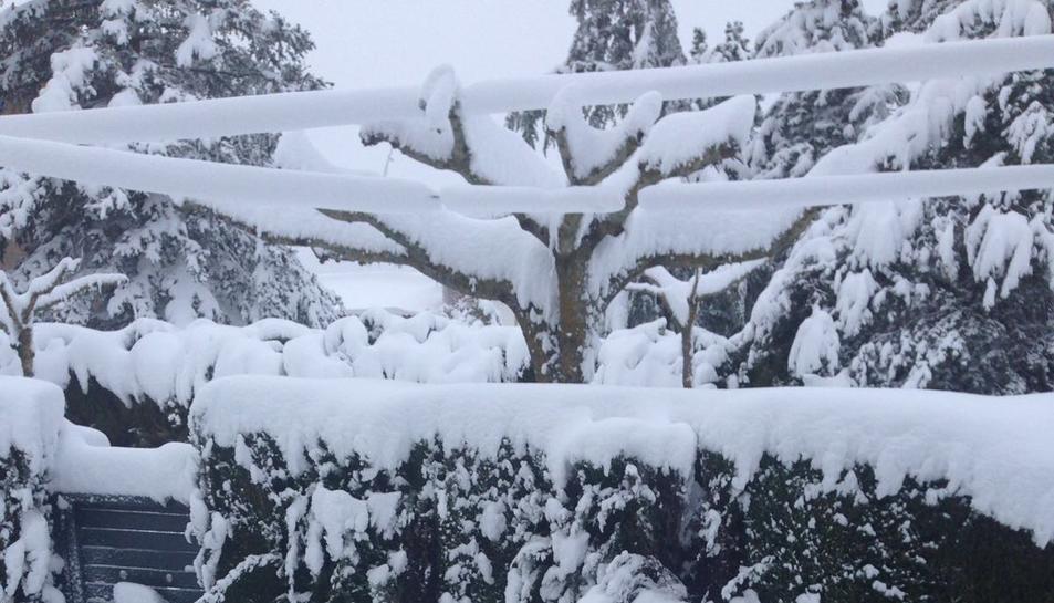 La nevada en Prades (4)