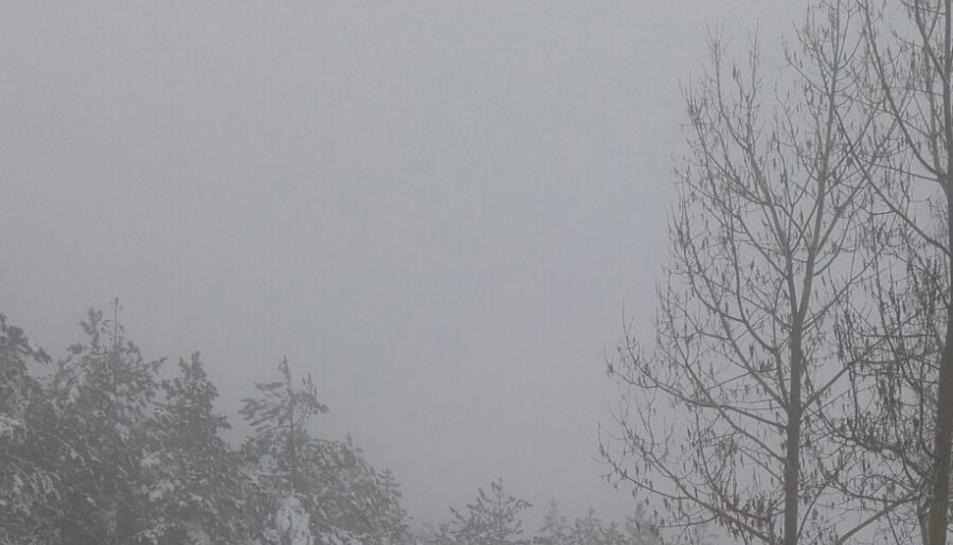 La nevada en Prades (5)