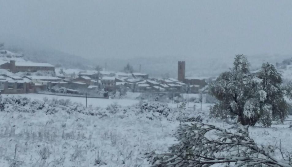 Conesa també s'ha llevat nevat.