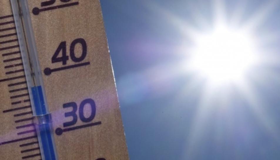 El mes de març ha registrat temperatures molt altes.