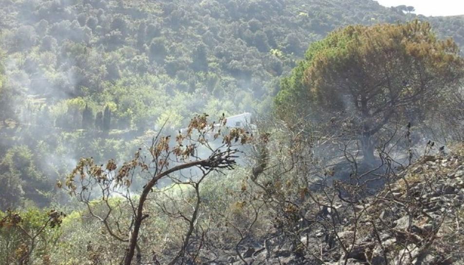 El foc ha cremat vegetació.
