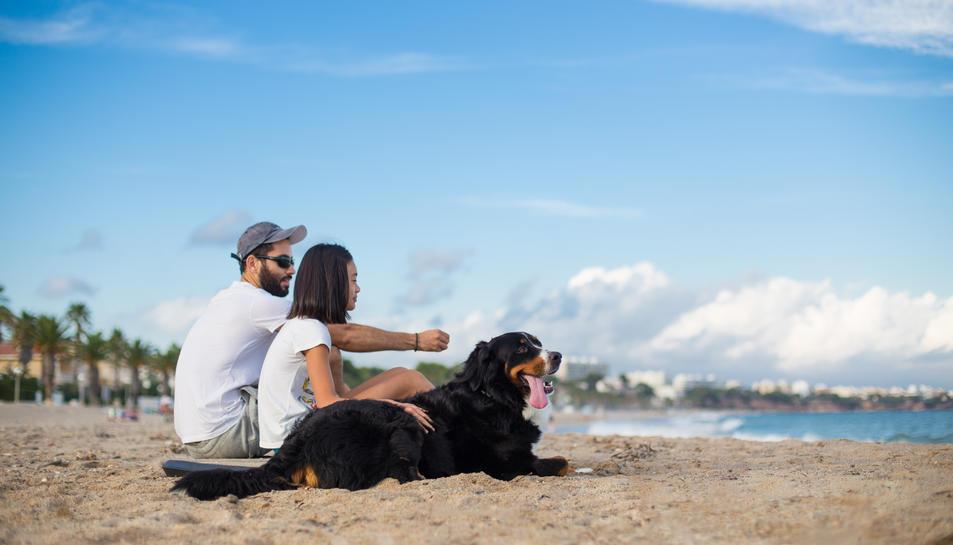Els propietaris d'animals domèstics ja podran gaudir de la platja acompanyats amb les seves mascotes en època turística.
