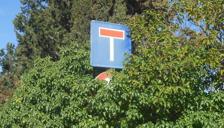 La vegetació tapa completament una de les senyals de trànsit.