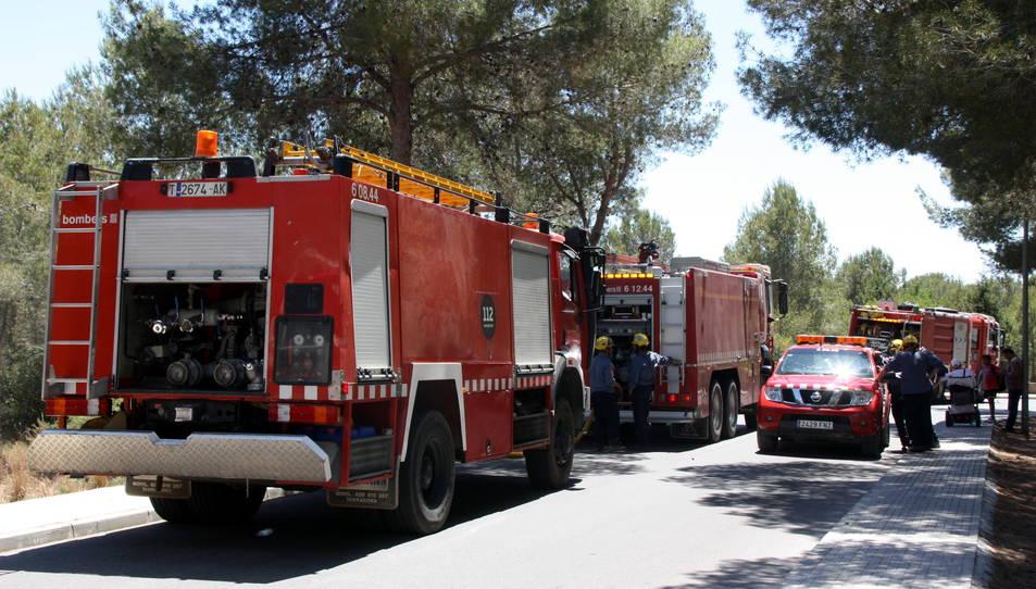 Imatge d'arxiu de diverses dotacions dels bombers.