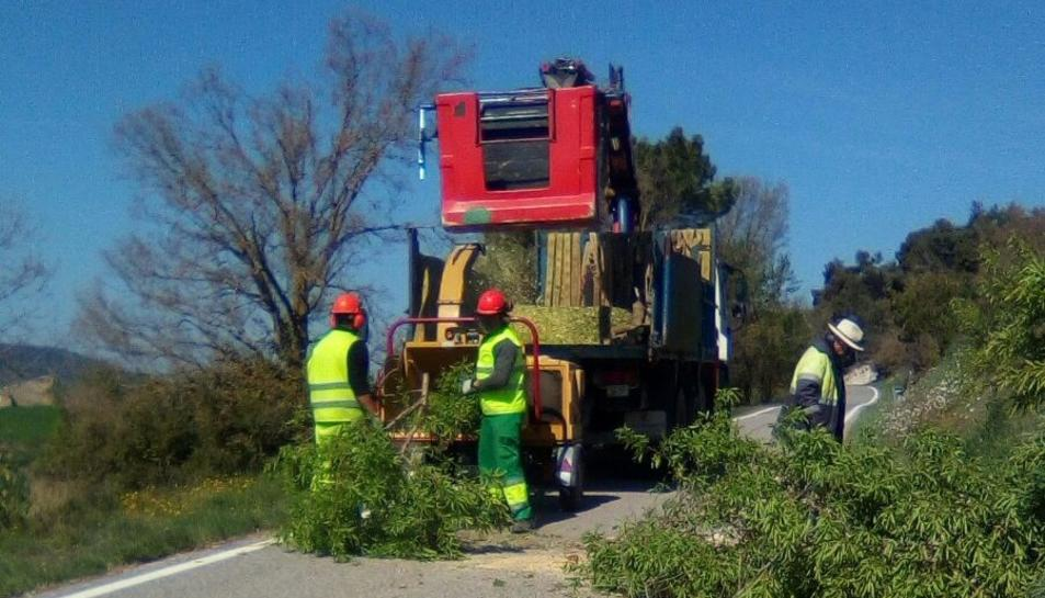 L'any passat també es van podar els arbrats dels marges d'un total de 114 quilòmetres d'altres 16 carreteres de la demarcació.
