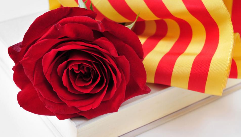 Imatge d'arxiu d'una rosa.