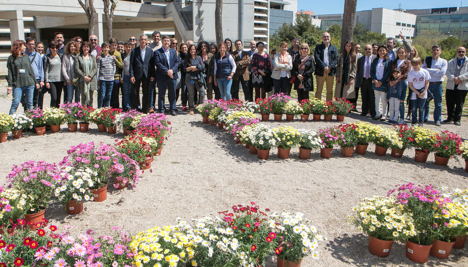 El jardí és una iniciativa de la URV i de Repsol.
