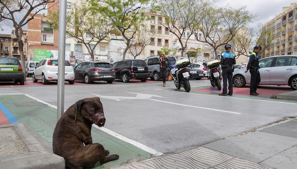 Al moment de ser detingut l'home duia un gos, que portava el morrió, i que ha estat lligat a una de les senyals del pàrquing durant la intervenció.