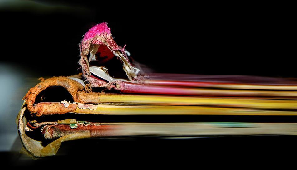Imatge pertanyent a l'exposició