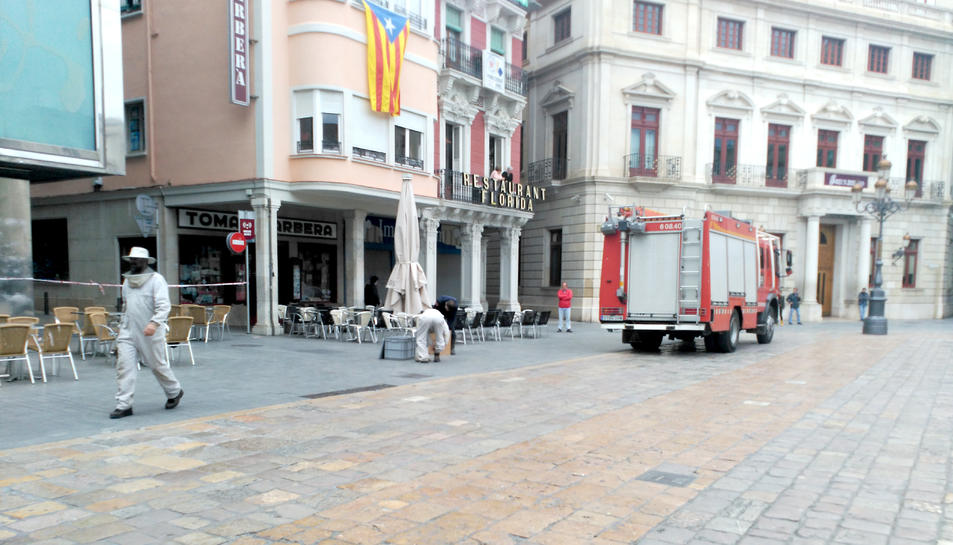La presència de les abelles va obligar a tancar l'accés a una part de la plaça.