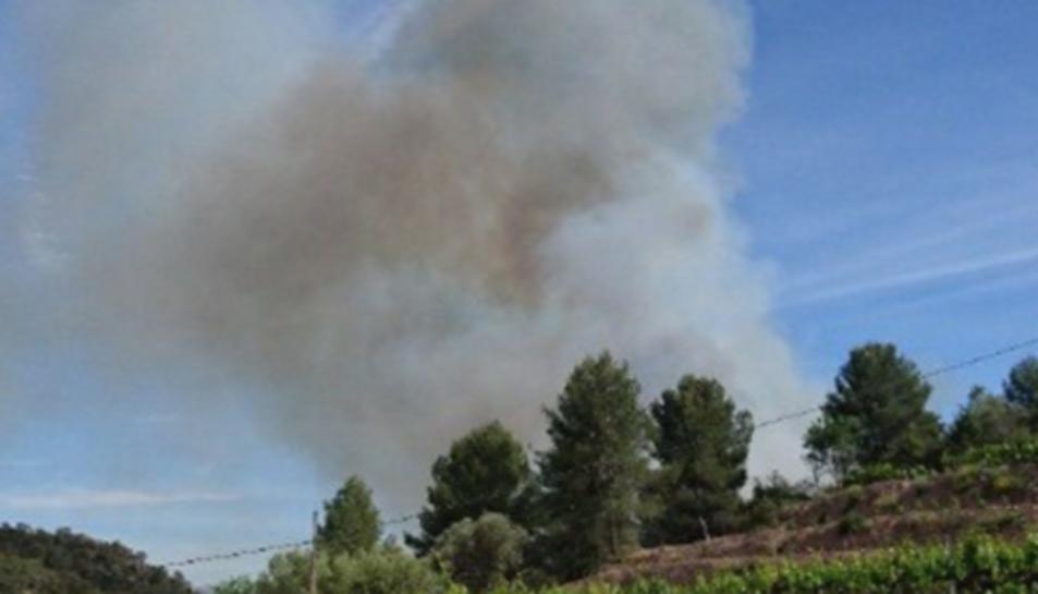 L'incendi és proper al quilòmetre 10 de la carretera T-732.