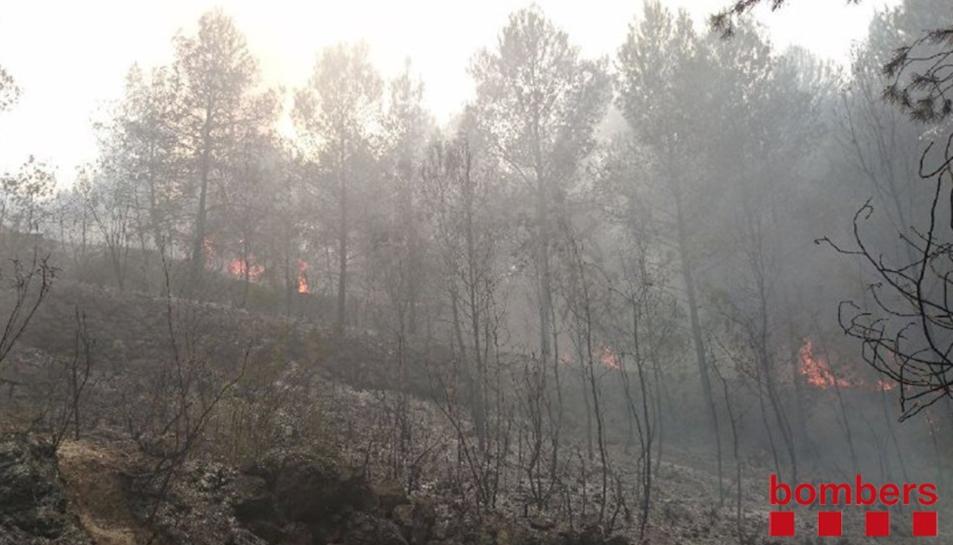 Els Bombers han donat el foc per controlat poc després de les sis de la tarda.