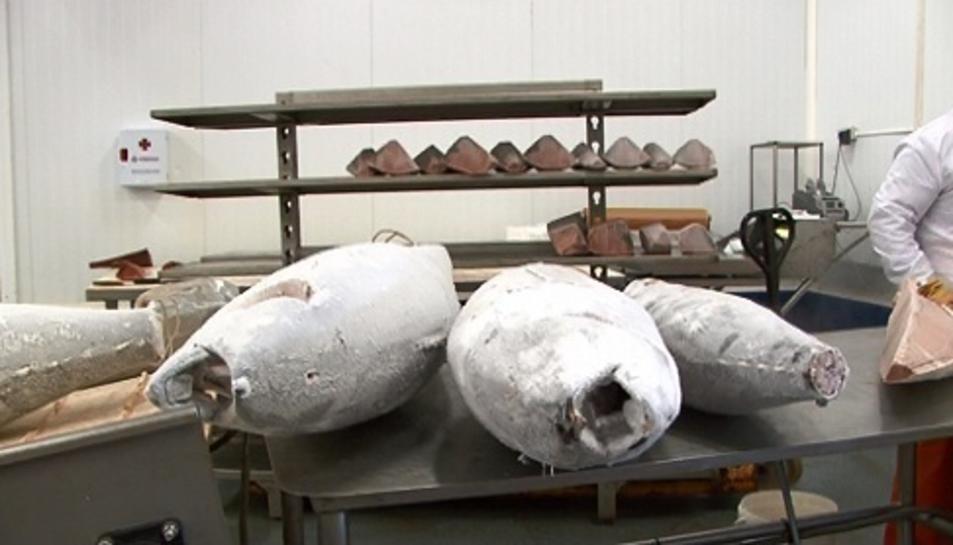 Els lots de tonyina que possiblement han causat les intoxicacions van ser comercialitzats per l'empresa Garciden.