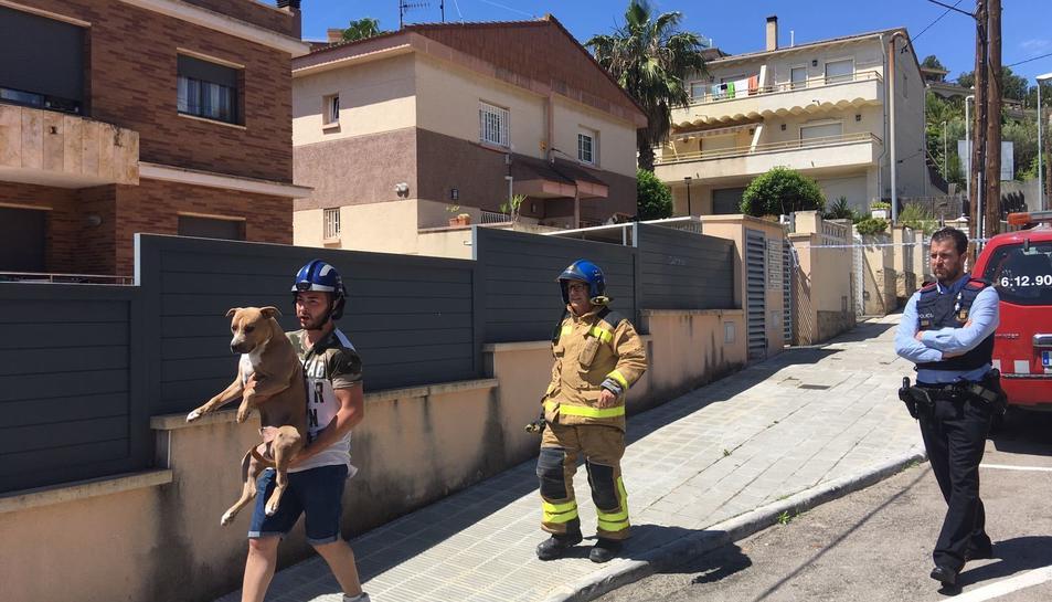 Un dels veïns ha rescatat el gos d'una de les víctimes.