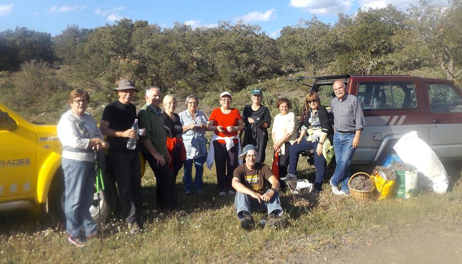 La jornada va començar amb la recollida de farigola al bosc.