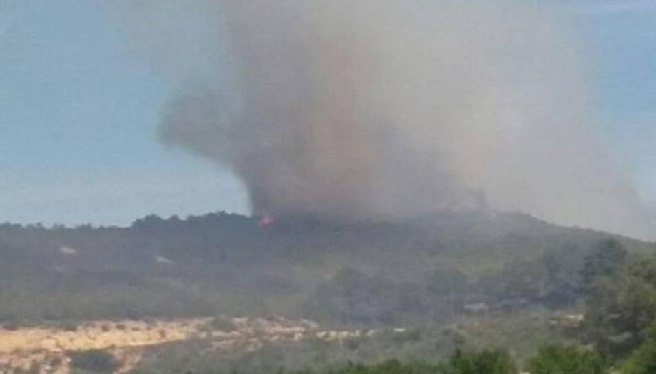 El foc ha cremat zona agrícola, pi blanc i matoll.