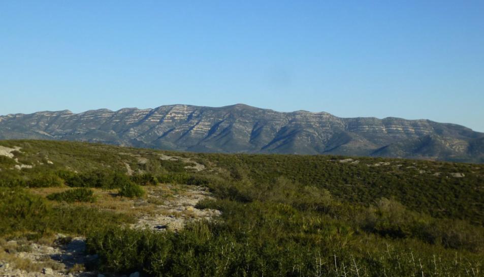 La Serra del Montsià, vista des de la Serra de Godall, en una fotografia del Facebook de Salvem lo Montsià.