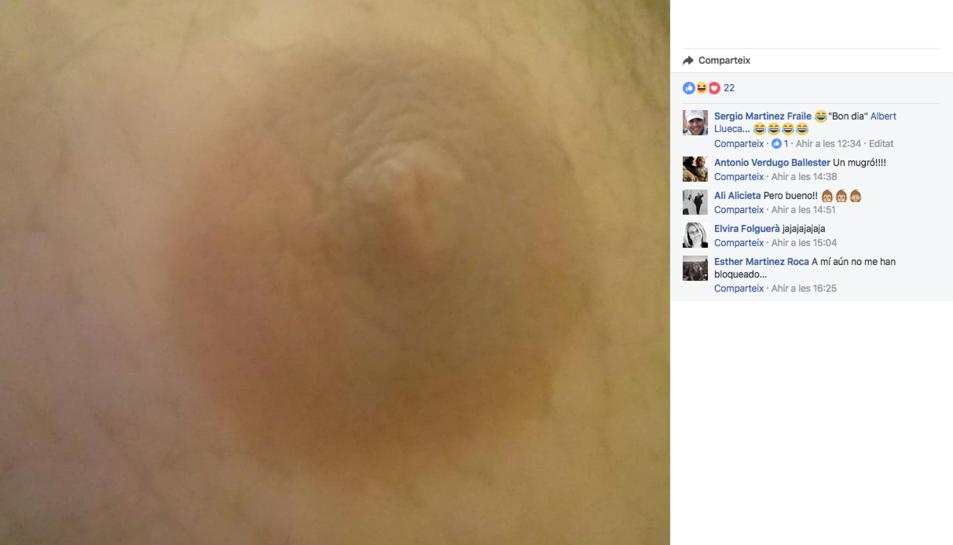 Imatge del perfil de Facebook d'Albert Llueca.