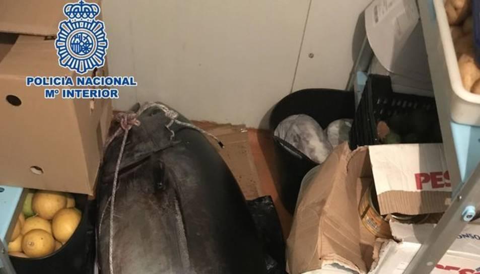 Imatge de la tonyina que van pescar els pescadors furtius.