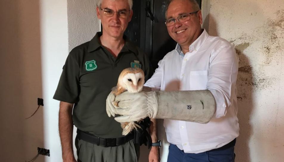 L'alcalde d'Altafulla, Fèlix Alonso, sostenint una de les òlibes junt a un Agent Rural.