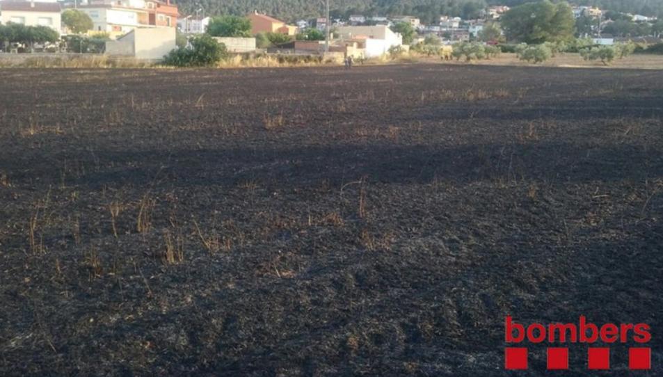 La zona afectada després d'apagar el foc.