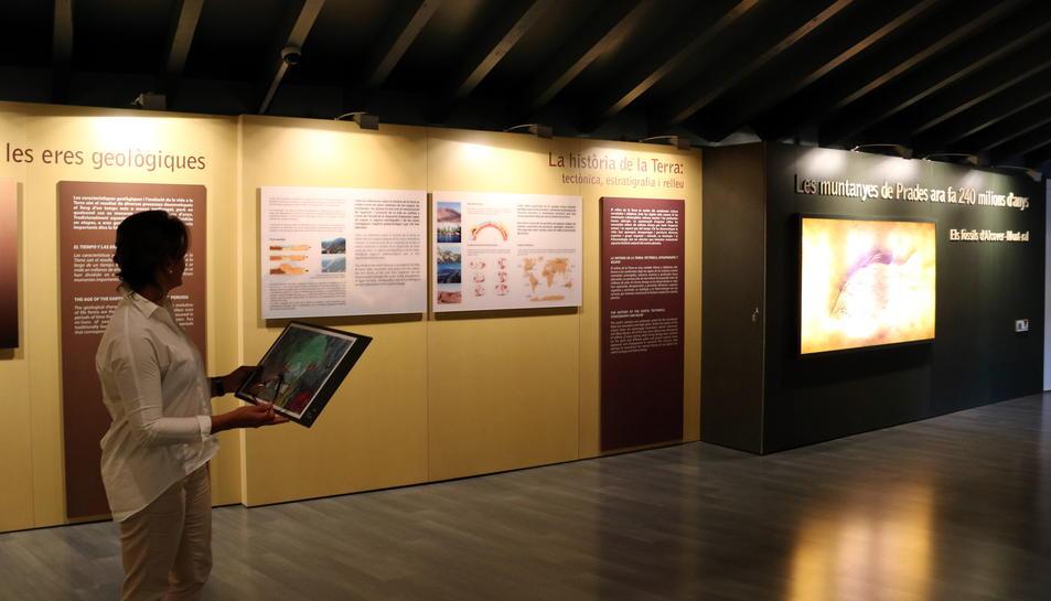 La directora del Museu d'Alcover, Ester Magrinyà, mostrant tota la part que es renovarà de l'exposició de paleontologia en el nou projecte museogràfic previst, en una imatge del juny del 2017