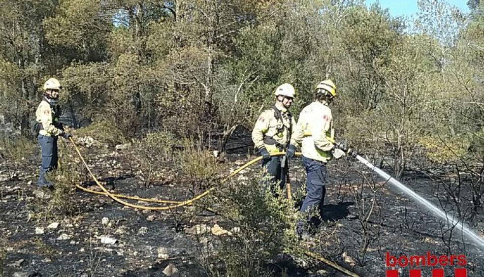 Els bombers han remullat la zona.