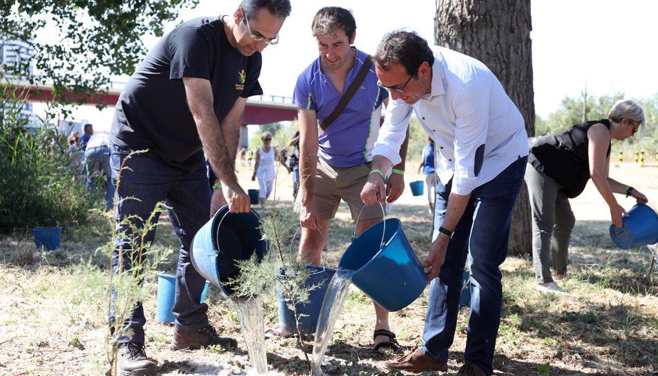 'Fem Francolí!' cuida el bosc de ribera