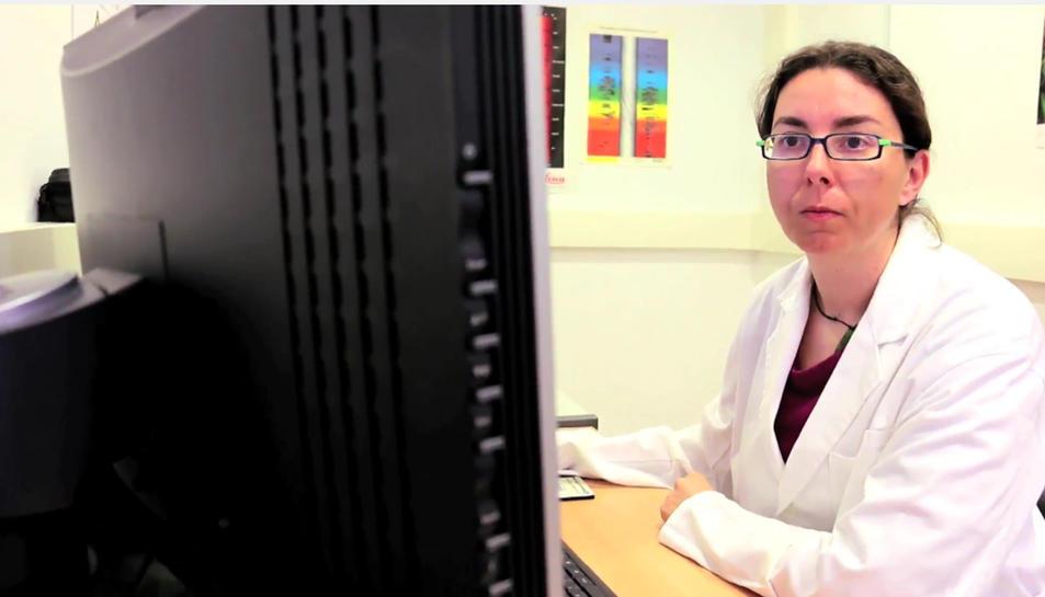 La investigadora Gemma Giménez davant de l'ordinador.