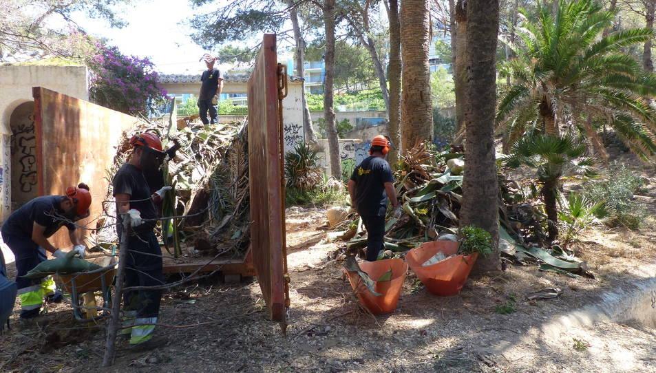 Treballs de restauració vegetal de Cala Morisca de Salou
