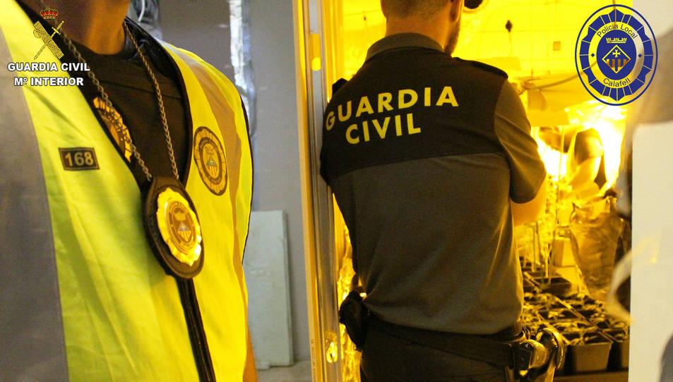 L'operació policial ha estat conjunta entre la Guàrdia Civil i la Policia Local.