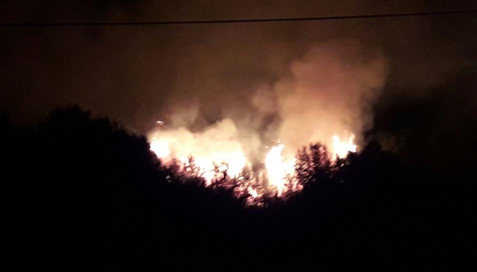 L'incendi ha afectat zona boscosa