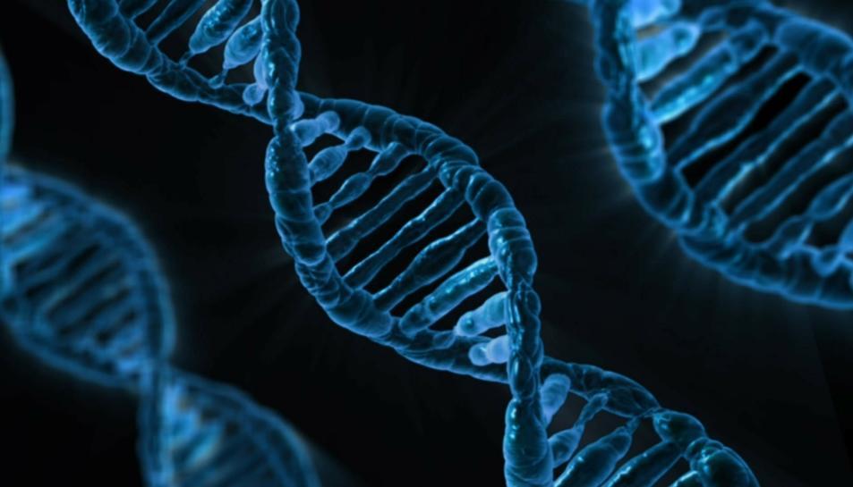 La tècnica permet identificar de forma precisa les mutacions d'un gen relacionades amb el càncer de còlon per poder preveure la malaltia.